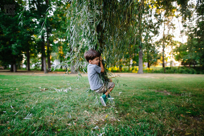 Boy swinging on weeping willow branches