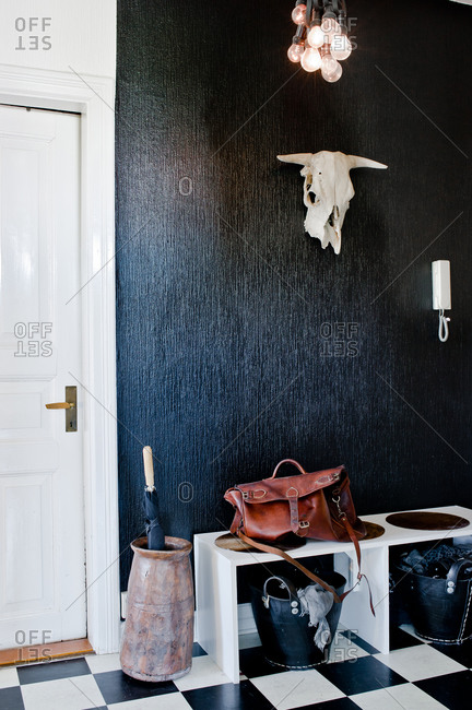 Steer skull hanging in a stylish entryway