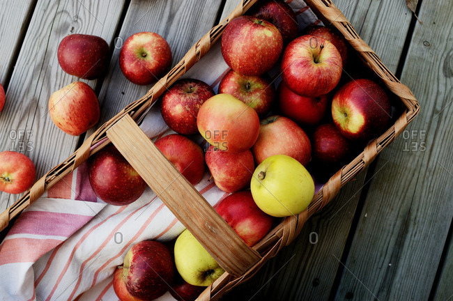 Fresh picked apples in a rustic basket