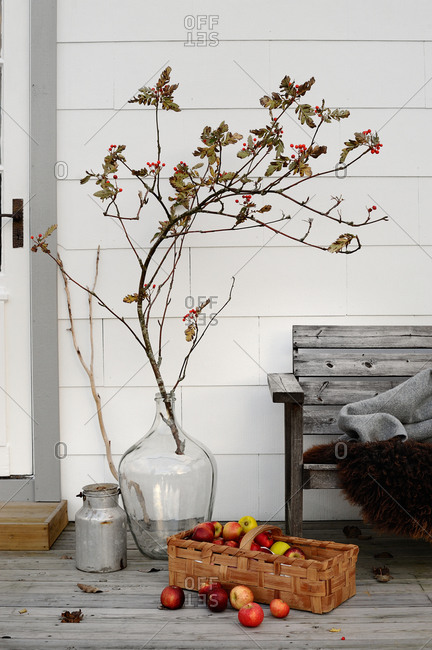 Branches and fresh-picked apples on a porch