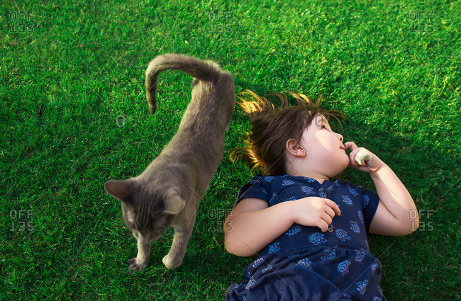Cute young girl lying on green grass next to gray cat