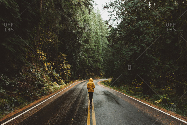 Person in yellow rain slicker walking on rainy road in Pacific Northwest