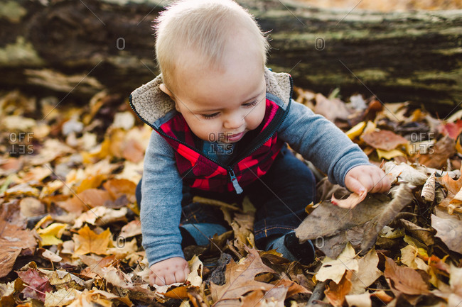 Baby boy playing in a pile of leaves