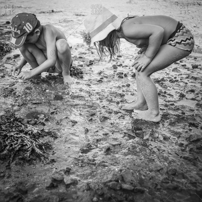 Young boy and girl exploring tidal zone of beach
