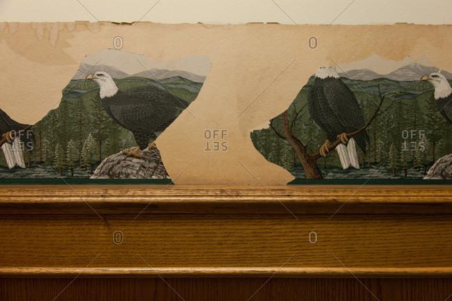 Eagle wallpaper in the diner in Kitwanga, British Columbia