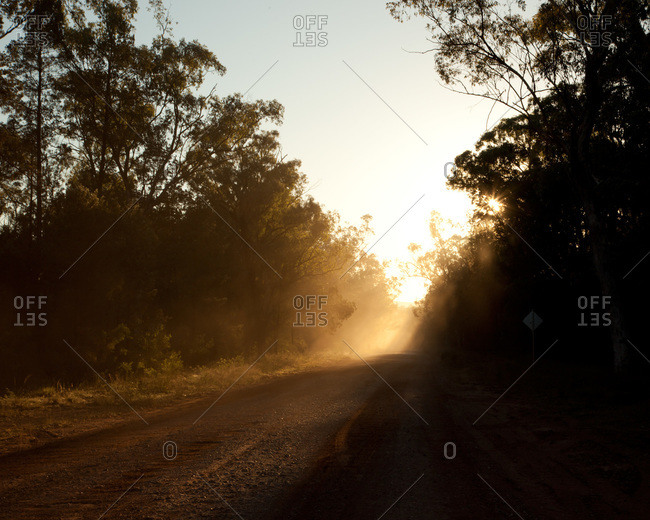 Sun rays shining on a country dirt road