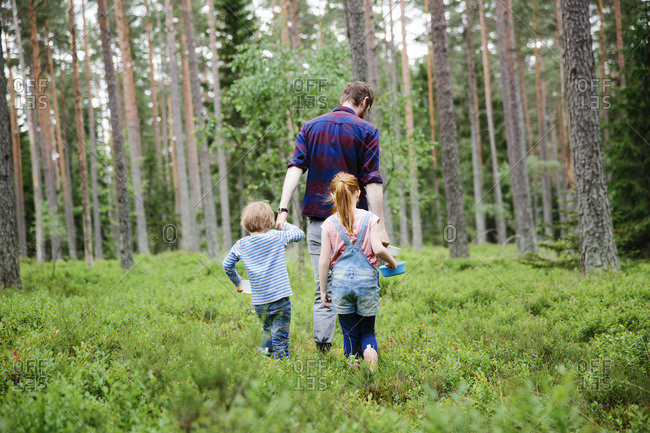 Rear view of father and children walking in blueberry farm