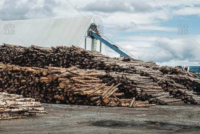 Stack of logs at lumber mill