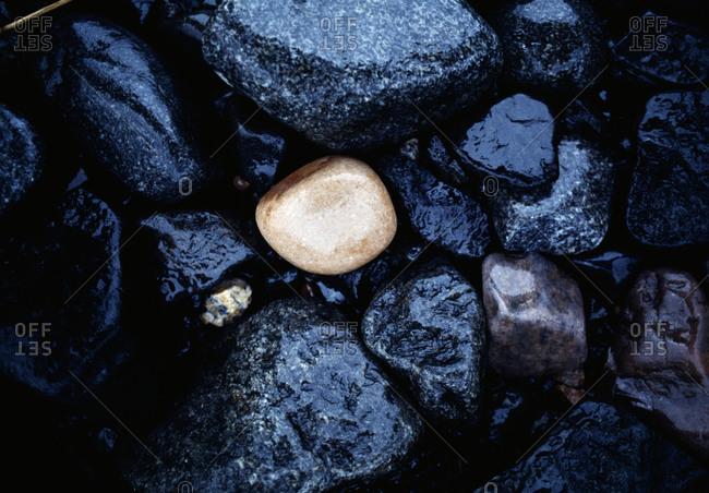 A White Stone Among Black Stones