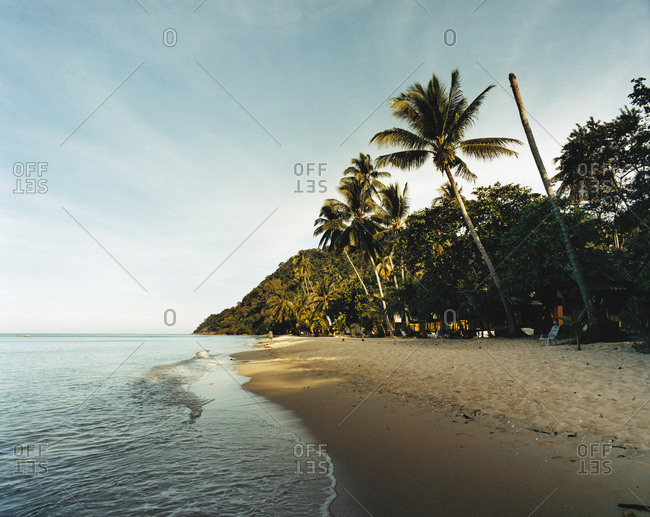 View of a beach with palm trees in Thailand