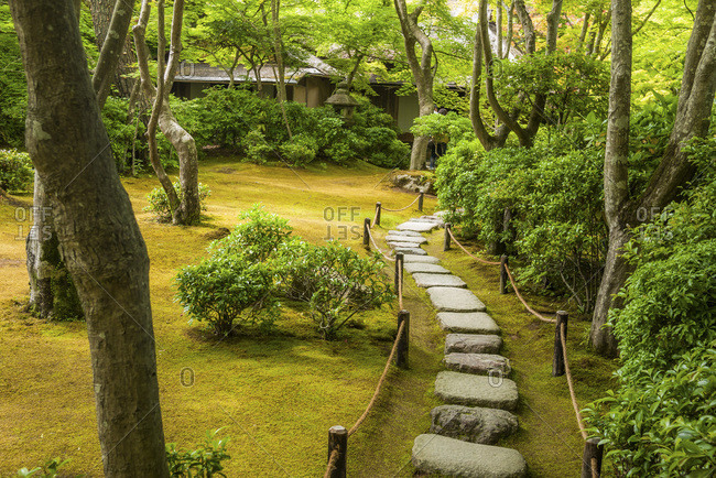 Paving stones in a Japanese forest