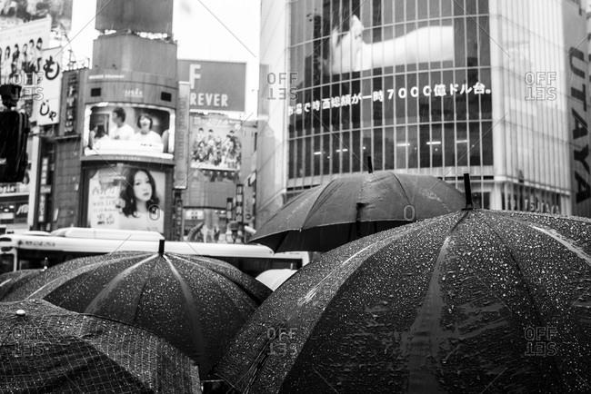 People with umbrellas in Tokyo, Japan