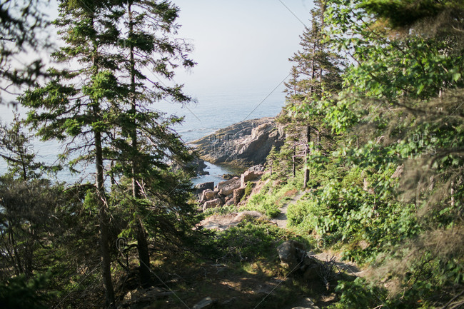 Path along rugged coast of Acadia National Park in Maine