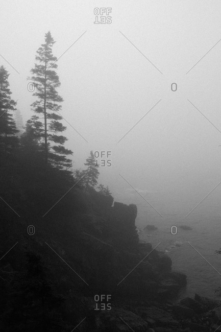 Coast of Acadia National Park, Maine in fog