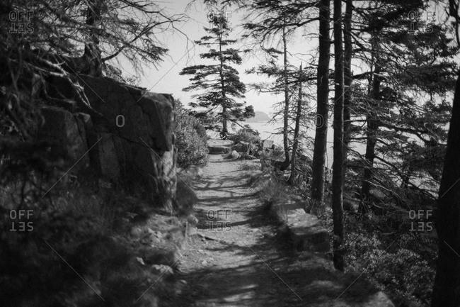 Trail along coast of Acadia National Park, Maine