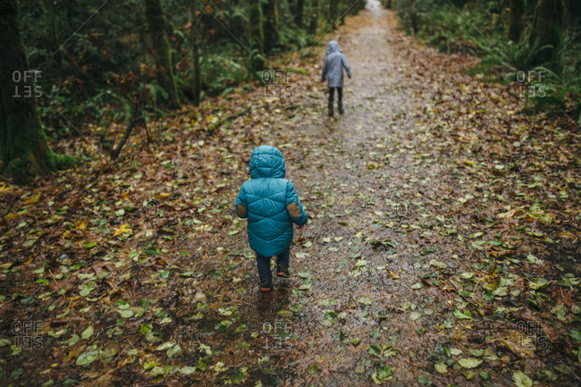 Brother and sister walking on a path scattered with autumn leaves