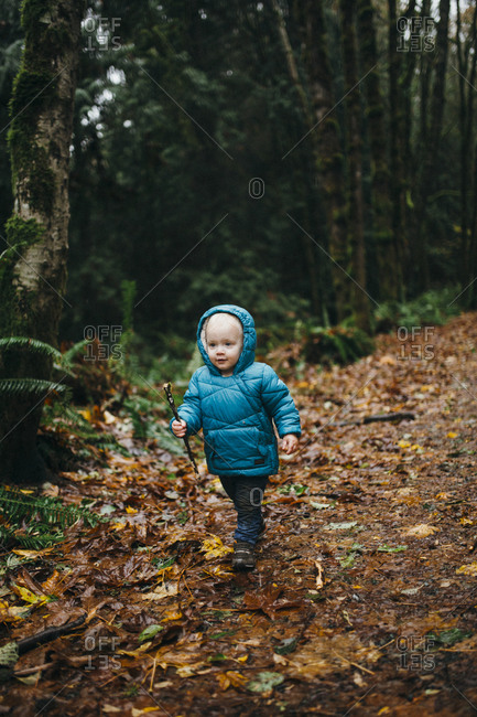 Toddler boy carrying a stick on a path littered with autumn leaves