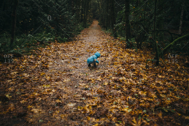 Little boy playing on a path littered with autumn leaves