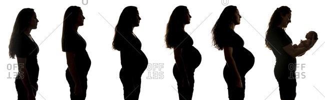Silhouettes of a woman's pregnancy progression