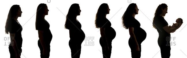 Silhouettes of a woman's pregnancy progression