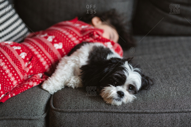 Little girl sleeping on top of black and white dog