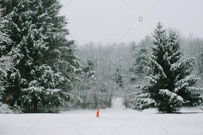 Young girl in orange snowsuit standing in an open snowy field in park