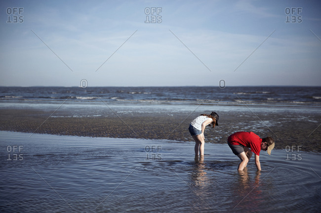 Kids digging in shallow beach water