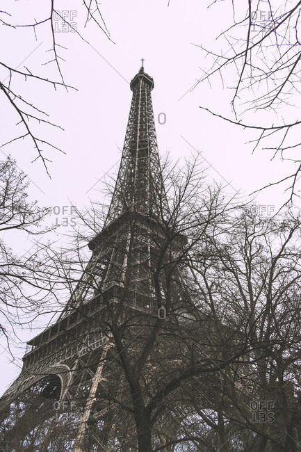 Eiffel Tower framed by trees on a grey day in Paris, France
