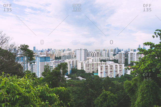 Singapore city surrounded by trees