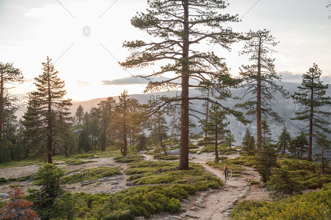 Woman walking down a hilly hiking trail