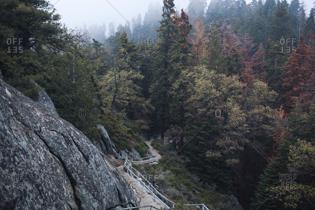 Steep mountain hiking trail in the mist