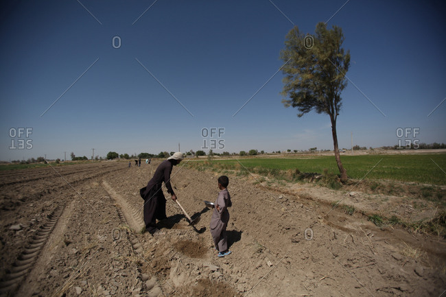 Zabol, Iran - May 2, 2014: Farmers working in a field