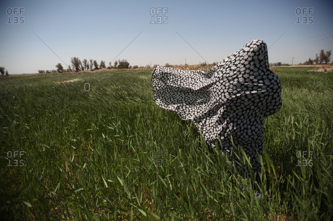 An Iranian woman standing in a tall grass field