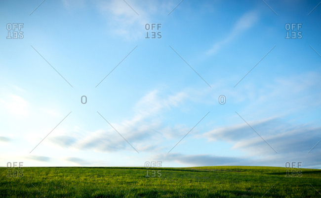 Grassy field under a blue cloudy sky