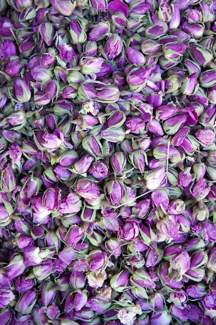 Rosebuds for tea in Morocco
