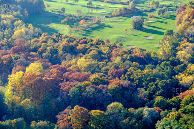 Trees with autumn foliage and a green golf course