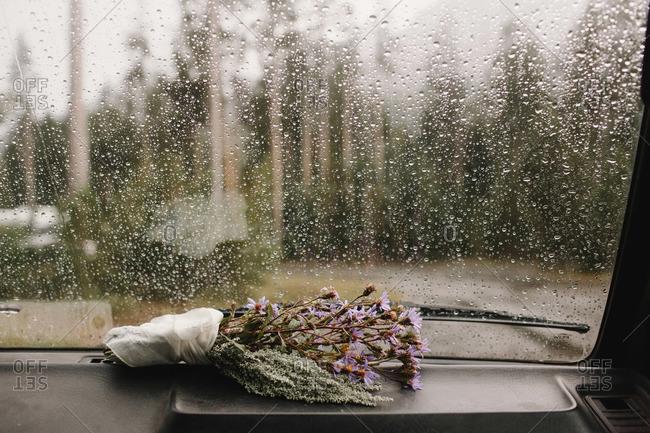 Bouquet of wild purple flowers on dashboard