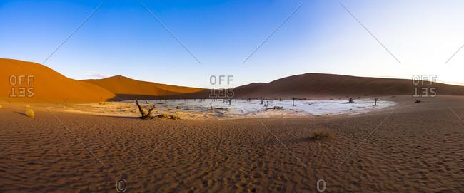 Dead Vlei in Namib Desert
