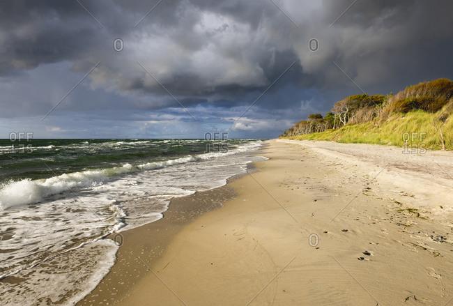 Baltic Sea beach in Born auf dem Darss in Germany