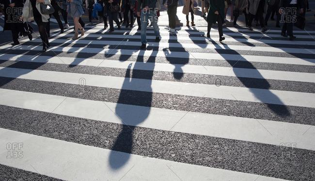 Commuters' shadows at Shibuya Crossing in Tokyo, Japan