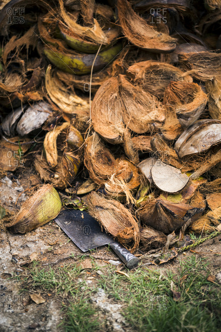 Pile of discarded coconut shells