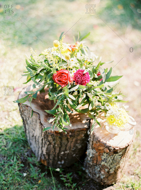 Flower arrangement on tree stump outdoors