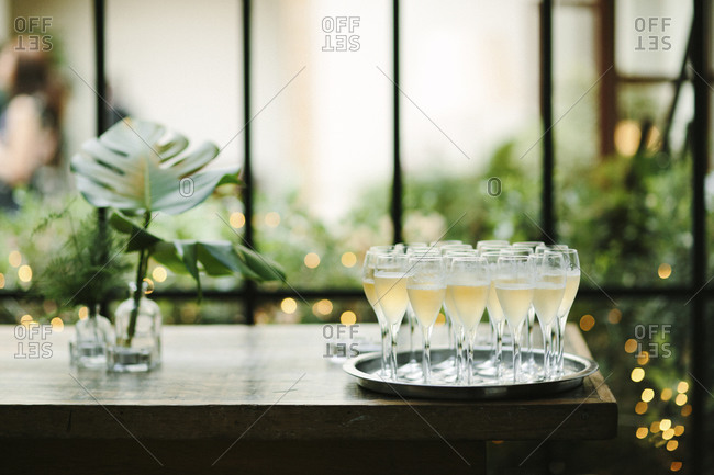 Glasses of champagne on wooden table with greenery in vases
