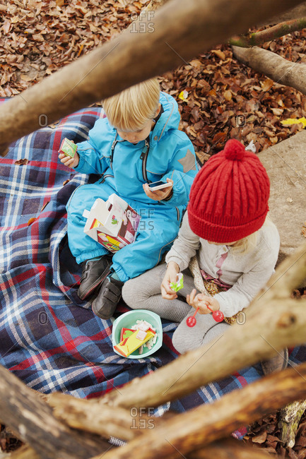 Brother and sister having a fall picnic under a tree