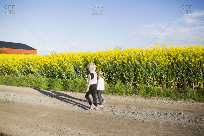 Brother and sister walking down a road by yellow flowers