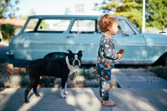 Boy eats waffle by a dog