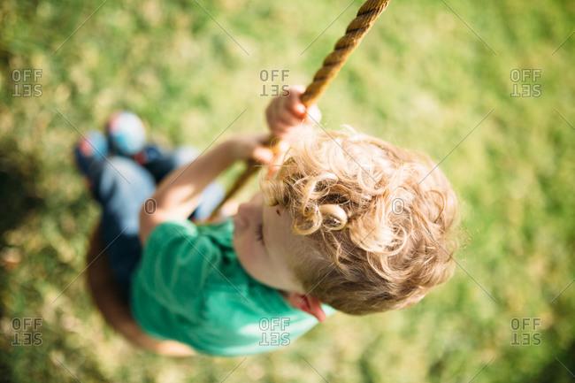 High angle of boy on tree swing