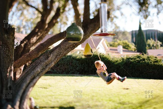 Boy on tree swing in front yard