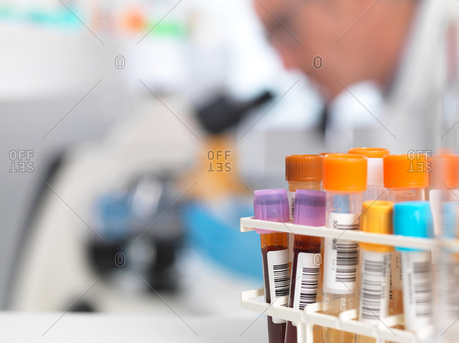 Medical testing of various human samples including blood, urine and chemical in lab