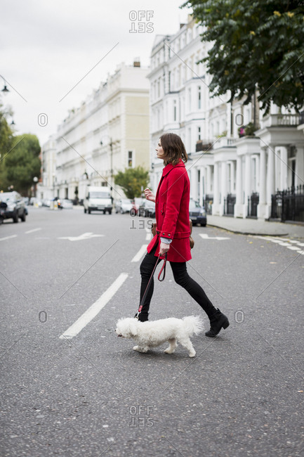 Woman wearing red jacket crossing the street with her dog